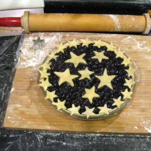 Freakin' Flamingo Blueberry Jam Pie